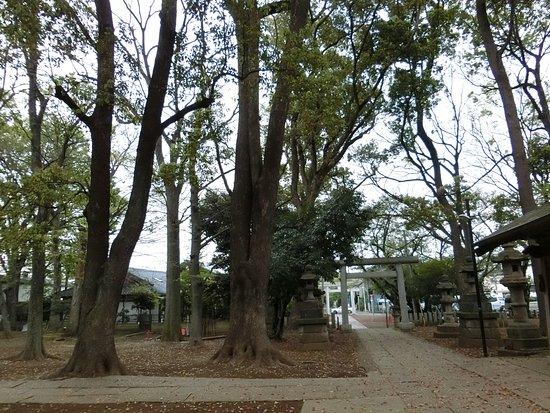 Foto de Meguro