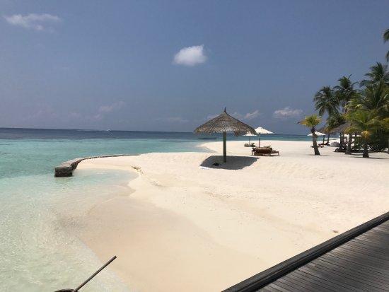 Bild von conrad maldives rangali island for Conrad maldives rangali
