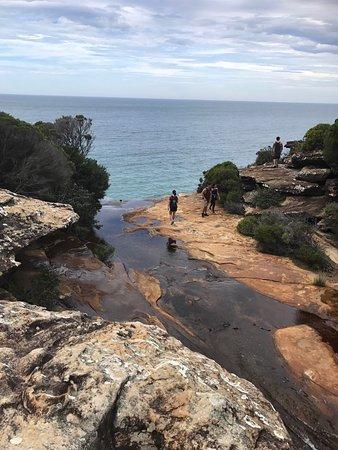 Royal National Park, Australien: photo2.jpg