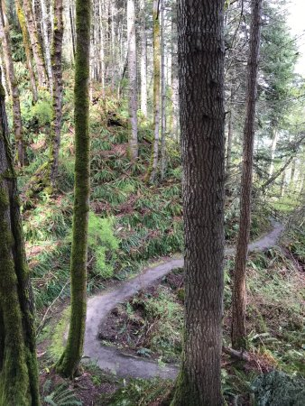 Courtenay, Canada: photo0.jpg