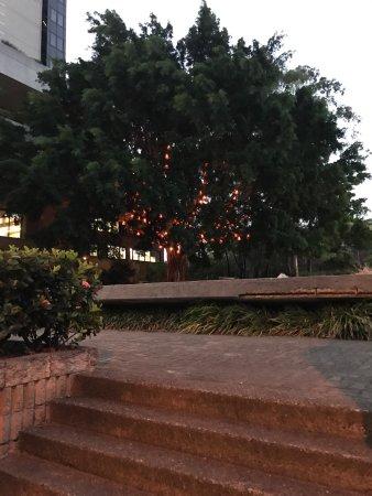 Brisbane, Australia: photo1.jpg