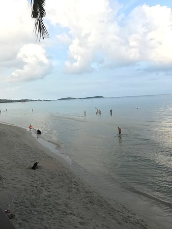 Samui Paradise Chaweng Beach Resort: photo0.jpg