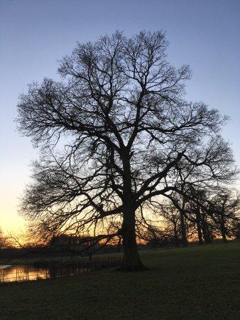 Banbury, UK: photo1.jpg