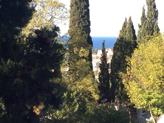 Villa Goluboy Zaliv : photo1.jpg