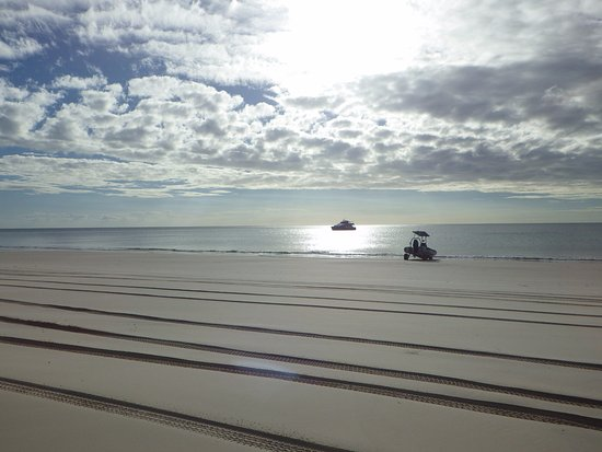 Hervey Bay, Australia: The boats