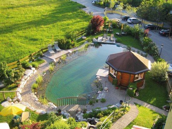 Hotel Garni Sonnleitn: Naturschwimmteich