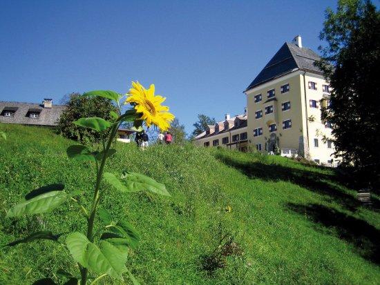 Hotel Garni Sonnleitn: Schloss Fuschl