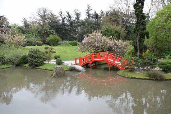 Arbres en fleurs picture of jardin japonais toulouse for Jardin japonais toulouse