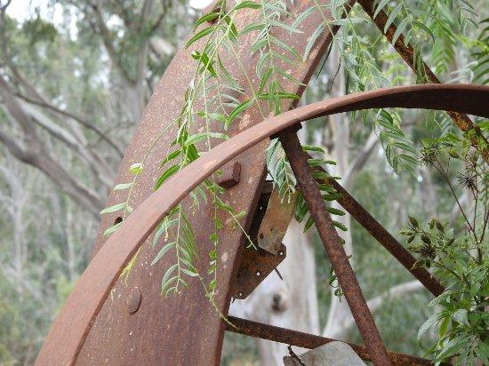 Renmark, Αυστραλία: DSCN0783_large.jpg