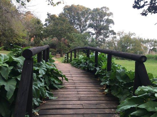 Bergville, Republika Południowej Afryki: photo1.jpg