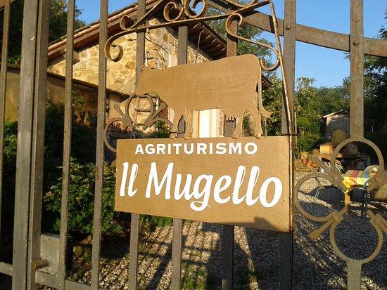 Vicchio, อิตาลี: immerso nel cuore del mugello,pace e genuinita'