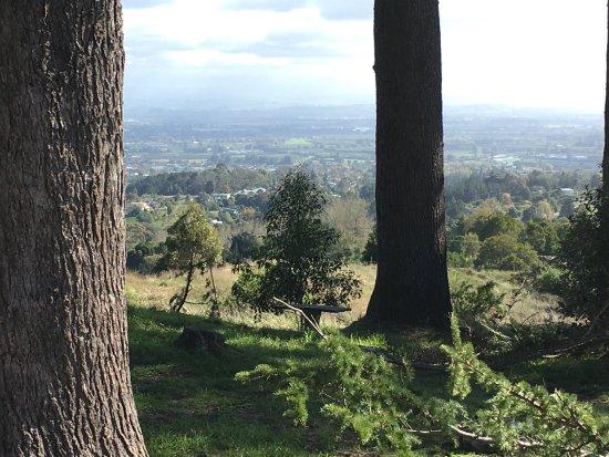 Havelock North, New Zealand: photo0.jpg