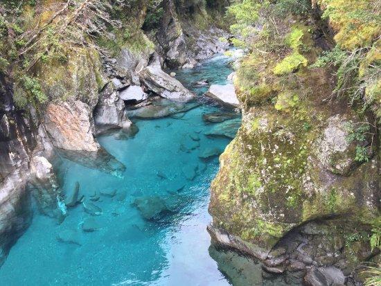 Γουανάκα, Νέα Ζηλανδία: photo2.jpg