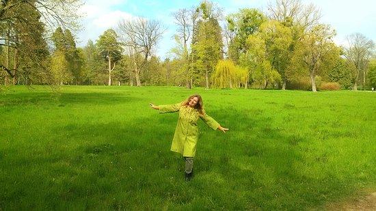 Bila Tserkva, Oekraïne: Зелено