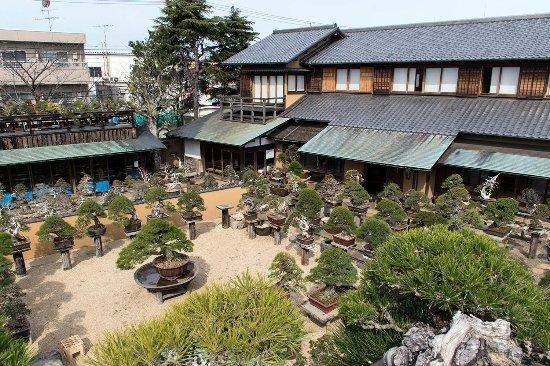 Edogawa, Jepang: 主庭全景