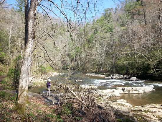 Hot Springs, NC: Laurel Creek in April