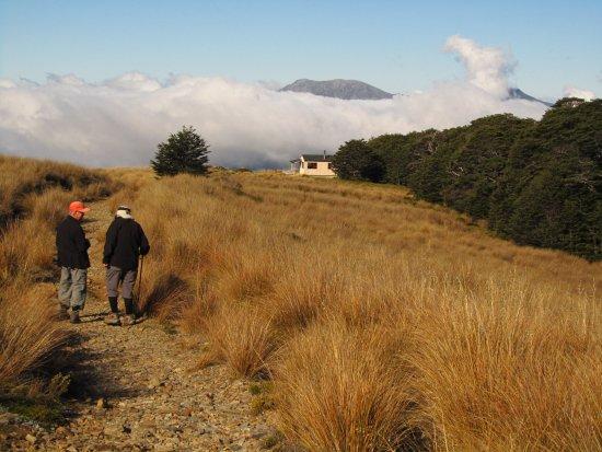 Takaka, New Zealand: Sylvester Hut