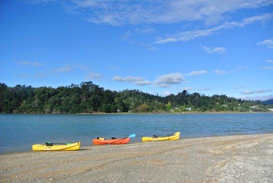Whakatane, Nueva Zelanda: Break time