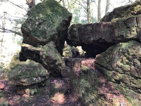 Coleford, UK: Puzzlewood