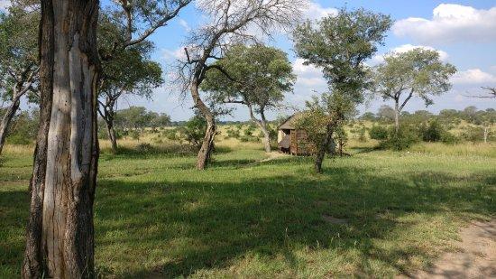 Manyeleti Game Reserve, Sudáfrica: Tents