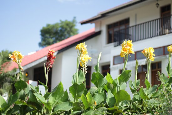 Boulevard Inn Mt Meru Guest House