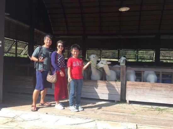 Khao Yai National Park, Thailand: photo8.jpg