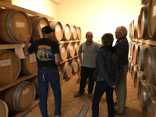 Montefalco, Italy: An Outstanding Umbria experience! Paolo answered so many questions we had about growing olives a