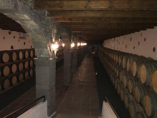 Yaiza, Espagne : Weinkeller