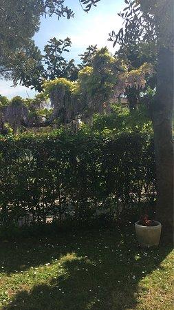 Oriago di Mira, Italia: Giardino