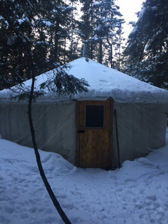 Ely, MN: Our cosy yurt