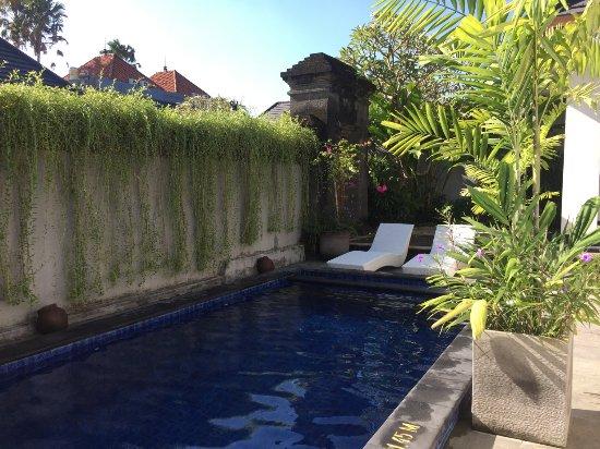Bali Nyuh Gading Villa Photo