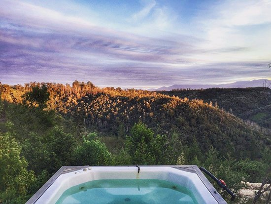 Rheenendal, South Africa: View from Lavender Edge Cottage