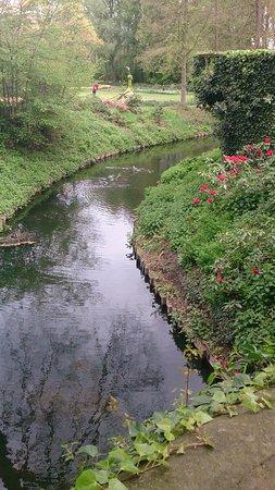 Groot-Bijgaarden, Belgium: du petit pont on voit les canetons suivre leur maman