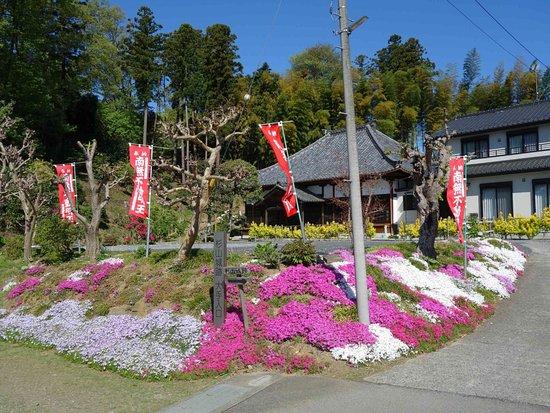 Shakuzen-ji Temple