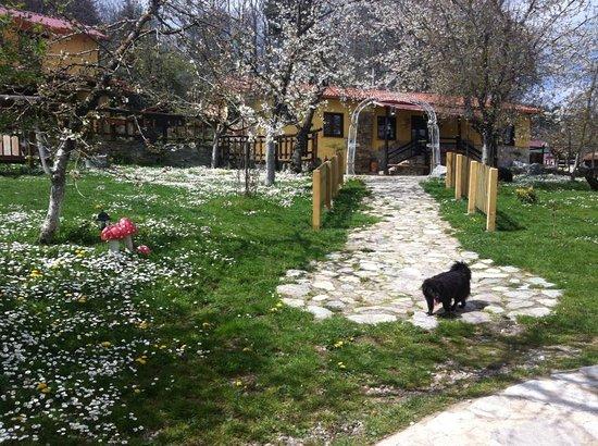 Sorbo San Basile, Italia: Immerso nel primo altopiano silano