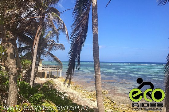East End, Grand Cayman: Experience local with ECO Rides Cayman.