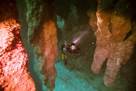 Ambergris Caye, Belize: Stalactites in the Blue Hole