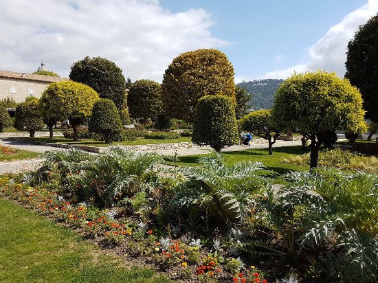 Picture of jardin du monastere de cimiez for Jardin nice