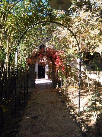 Foto Petrignano d'Assisi