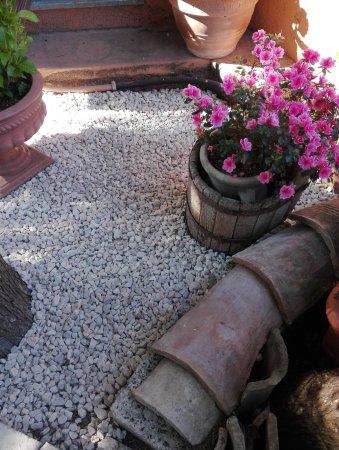 Alanno, Italia: Quando la passione per la cucina lascia spazio a quella per la natura nasce una poesia come ques