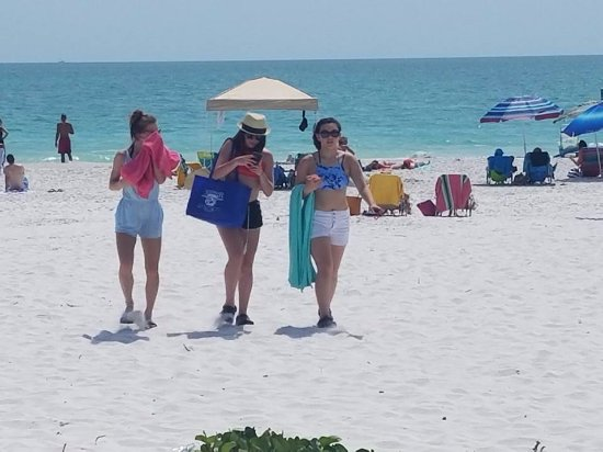 Best Places For Lunch On Anna Maria Island