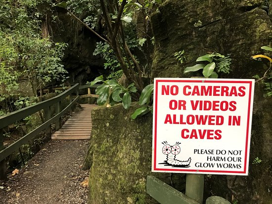 Northland Region, New Zealand: Outside Kawiti Cave