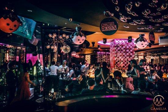 Camelia Lounge