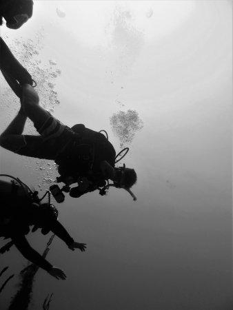Utila, Honduras: Fun divers making bubbles