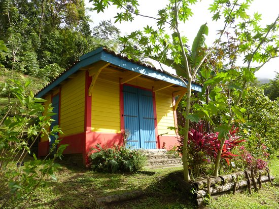 Bed and breakfast i Le Morne-Rouge