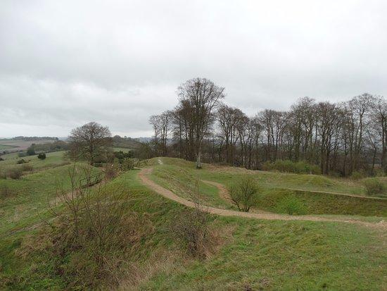 Danebury Iron Age Hill Fort