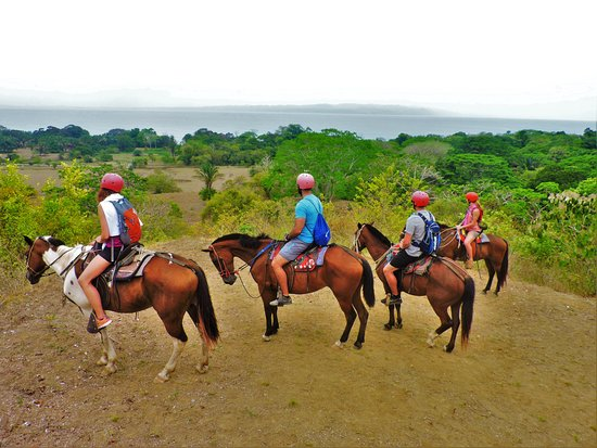 Puerto Jiménez, Costa Rica: Enjoy the ride!