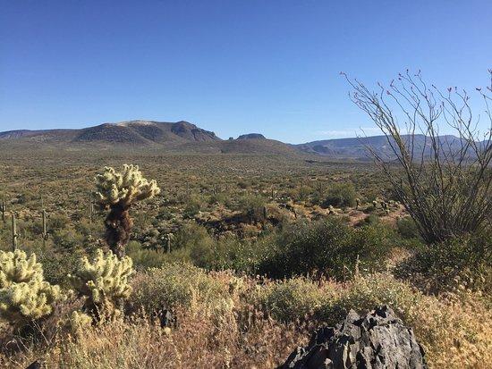 Cave Creek, AZ: photo2.jpg