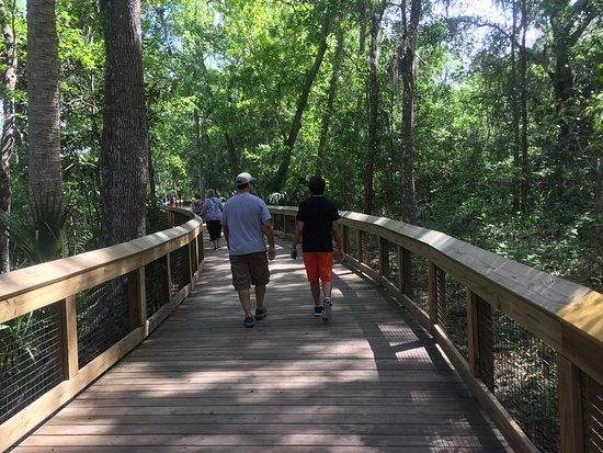 Orange City, FL: Me and my son walking to the head spring.