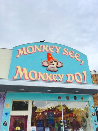Monkey See, Monkey Do! This is a quirky and fun-filled